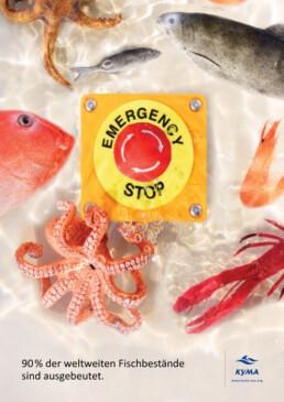 Werbung gegen den kommerziellen Fischfang kelonya.ch
